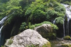 宜昌到三峽人家風景區直通車一日游