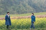 宜昌到百里荒草原一日游〈宜昌避暑胜地,山楂树之恋拍摄地〉