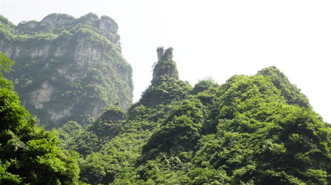 三峡竹海风景区 三峡竹海