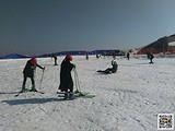 【宜昌到百里荒滑雪一日游】滑雪新世界 纵情百里荒
