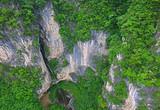 楠木王国康养仙居,宜昌夷陵区雾渡河中亚楠木林风景区欢迎您