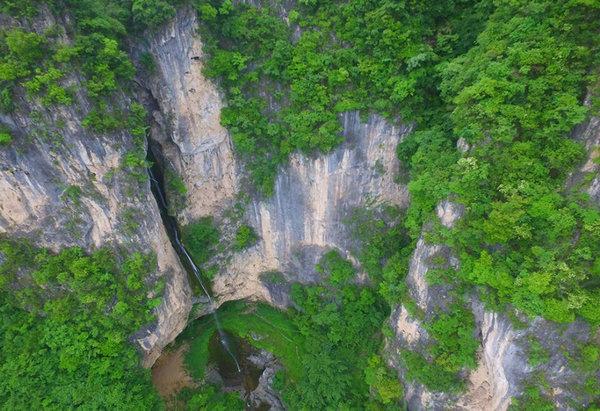 楠木林风景区依托独特的峡谷山水和国内发现最大,种群最多的野生楠木