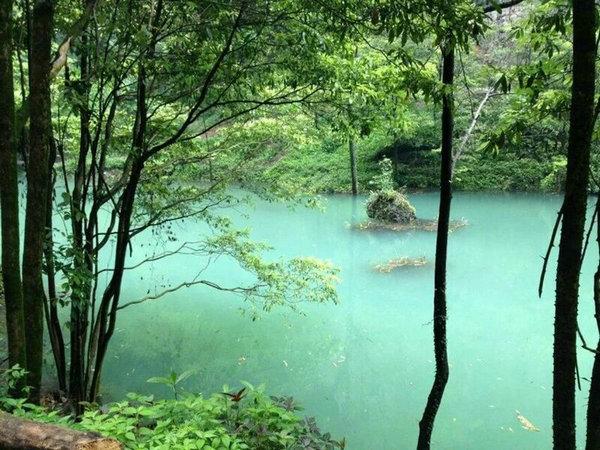 中亚楠木林风景区在宜昌夷陵区雾渡河交战垭建成开放