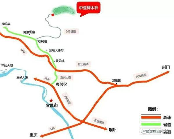 宜昌中亚楠木林风景区自驾游攻略,楠木林休闲游