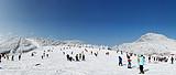 神农架大九湖景区冬季对自驾游游客免费开放