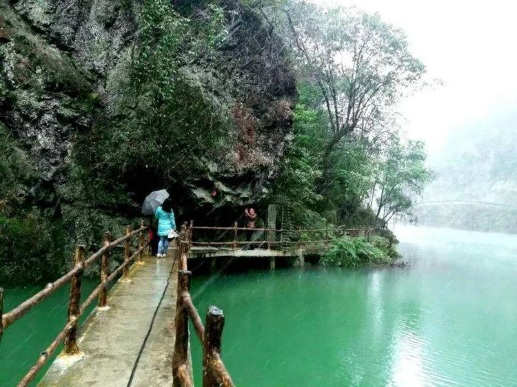 宜昌中亚楠木林旅游