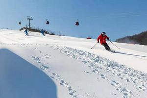 绿葱坡滑雪一日游