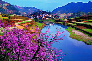 南京到荆州/凤凰古城、天门山、张家界、墨戎苗寨、红楼5日游
