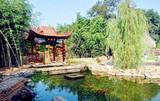 日照到临沂竹泉村 红石寨纯玩一日游