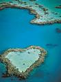 澳大利亚新西兰文莱12日品质游&郑州出发到澳大利亚新西兰旅游