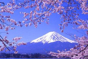日本本州全景温泉美食7日游