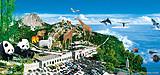 石岛赤山、神雕山野生动物园二日游