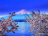 日本本州无自费豪华6日游