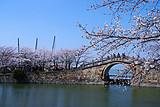 南京中山陵 +夫子庙、无锡灵山大佛、杭州西湖 双水乡双飞三日
