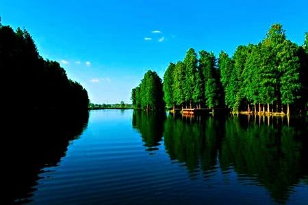 李中水上森林公园、南山竹海、无锡拈花湾、鼋头渚三日游