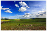 呼伦贝尔大草原+莫日格勒河+亚洲第一湿地+室韦小镇双飞5日游