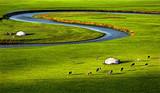 呼伦贝尔草原+阿尔山森林公园+额尔古纳湿地双飞6日游