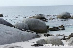 武汉到肯尼亚精华8日游  武汉中国国旅