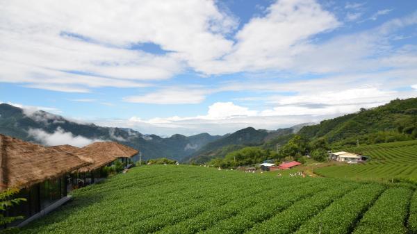 武汉直飞台湾高雄环岛舒适八日游