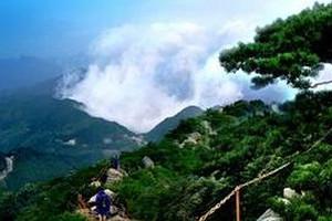 武汉到张家界、天门山玻璃栈道、凤凰古城纯玩四日游