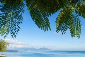 武汉到巴厘岛爱上下午茶蜜月六日游 巴厘岛旅游价格 巴厘岛攻略