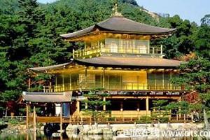 寻觅东京-北海道品质七日游