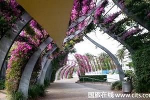 春节武汉到新西兰纯净9日游