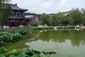 武汉出发到西安世园兵马俑华山六天游 武汉出发西安旅游价格