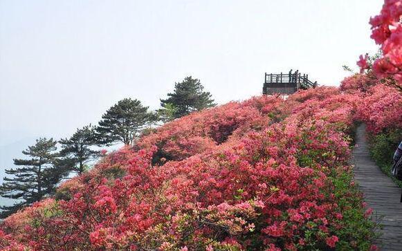 麻城龟峰山风景旅游区位于大别山中段