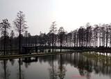 武汉直飞丽江——爱上丽江、泸沽湖纯玩高品质游5天