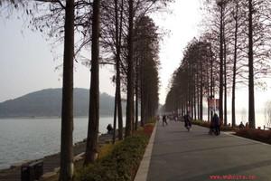 灵秀湖北 武汉全景一日游