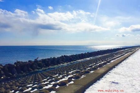 武汉直航日本本州美食之旅六日游