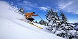 《沙湖滑雪一日游》到沙湖、镇北堡影城、西夏王陵汽车一日游