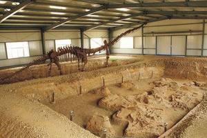 灵武恐龙地质博物馆
