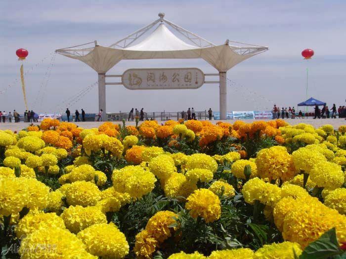 银川阅海公园