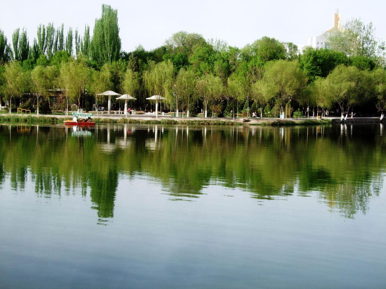 中山公园不仅是银川的风景名胜
