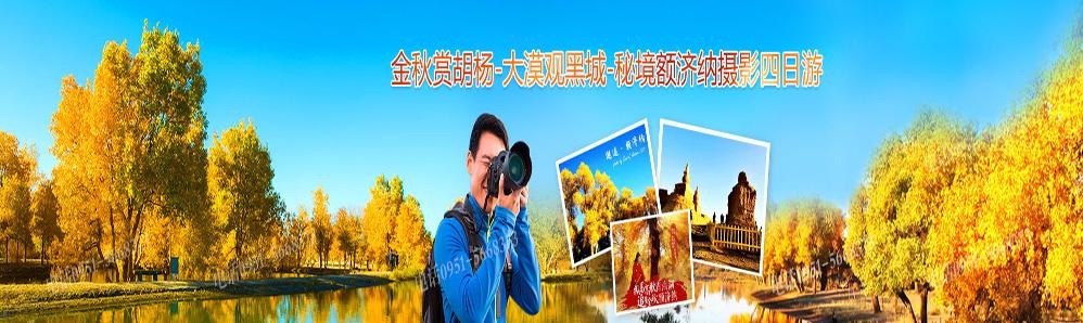额济纳旗胡杨林摄影团