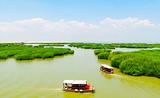银川到沙湖一日游