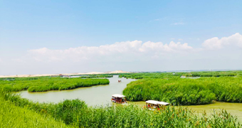 寧夏中旅:寧夏三日游記