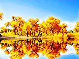【国庆节行摄西部大环线】甘肃敦煌、额济纳胡杨、巴丹吉林七日游