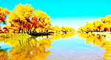 银川到月亮湖、敖伦布拉格峡谷、巴丹吉林沙漠、金秋胡杨林七日游