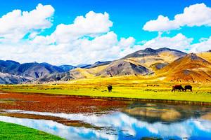 暑假追夢西藏四臥12日游