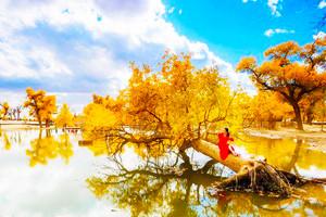 【經典額濟納】國慶額濟納胡楊林、黑水城純玩攝影四日游