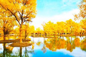 银川到额济纳胡杨林、西部梦幻大峡谷、月亮湖穿越五日游