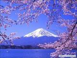 日本147赏樱美食温泉超顶级奢华6日游(住超五星酒店无自费)