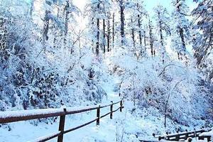 西岭雪山二日游【滑雪+花水湾温泉】