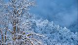 瓦屋山二日游【滑雪、观日出】