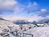 西岭雪山一日游价格,成都到西岭雪山滑雪价格