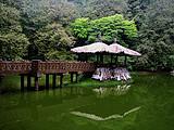 【纯玩团】郑州到台湾旅游价格_台湾环岛纯玩双卧11日游