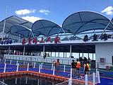 【秦皇海上人家】飄在海上的旅游景區-秦皇海上人家